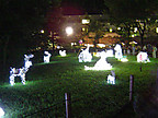 夜の多摩動物公園